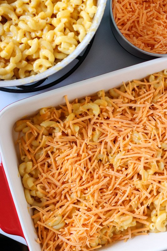 layer of cheese and noodles in a casserole dish
