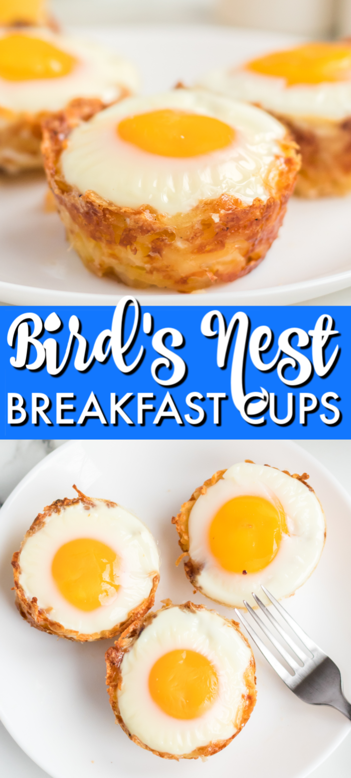 "Bird's Nest Breakfast Cups are a fun way to eat eggs and hash browns for breakfast. These baked egg cups combine hash browns and cheese to form a ""nest"" and are topped with an egg. 