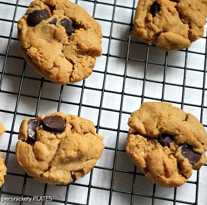 Easiest Ever Peanut Butter Chocolate Chip Cookies - five ingredients, a bowl, a mixer, an oven, and you're in business! | Persnickety Plates