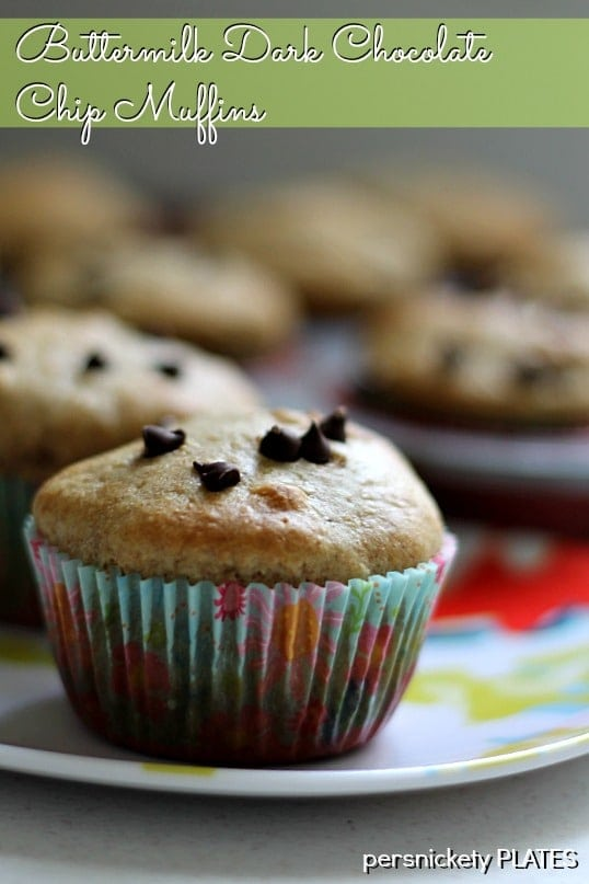 Buttermilk Dark Chocolate Chip Muffins