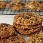 Oatmeal Molasses Chocolate Chip Cookies