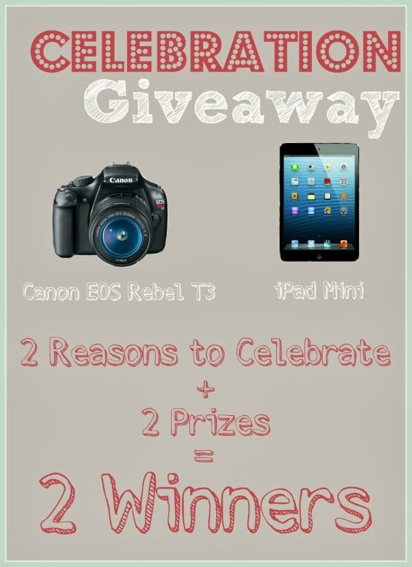 iPad Mini & Canon Rebel T3 Giveaway {Runs 2/21/14 - 2/27/14} | Persnickety Plates
