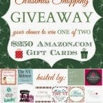 Last Minute Christmas Shopping {Amazon Giveaway}