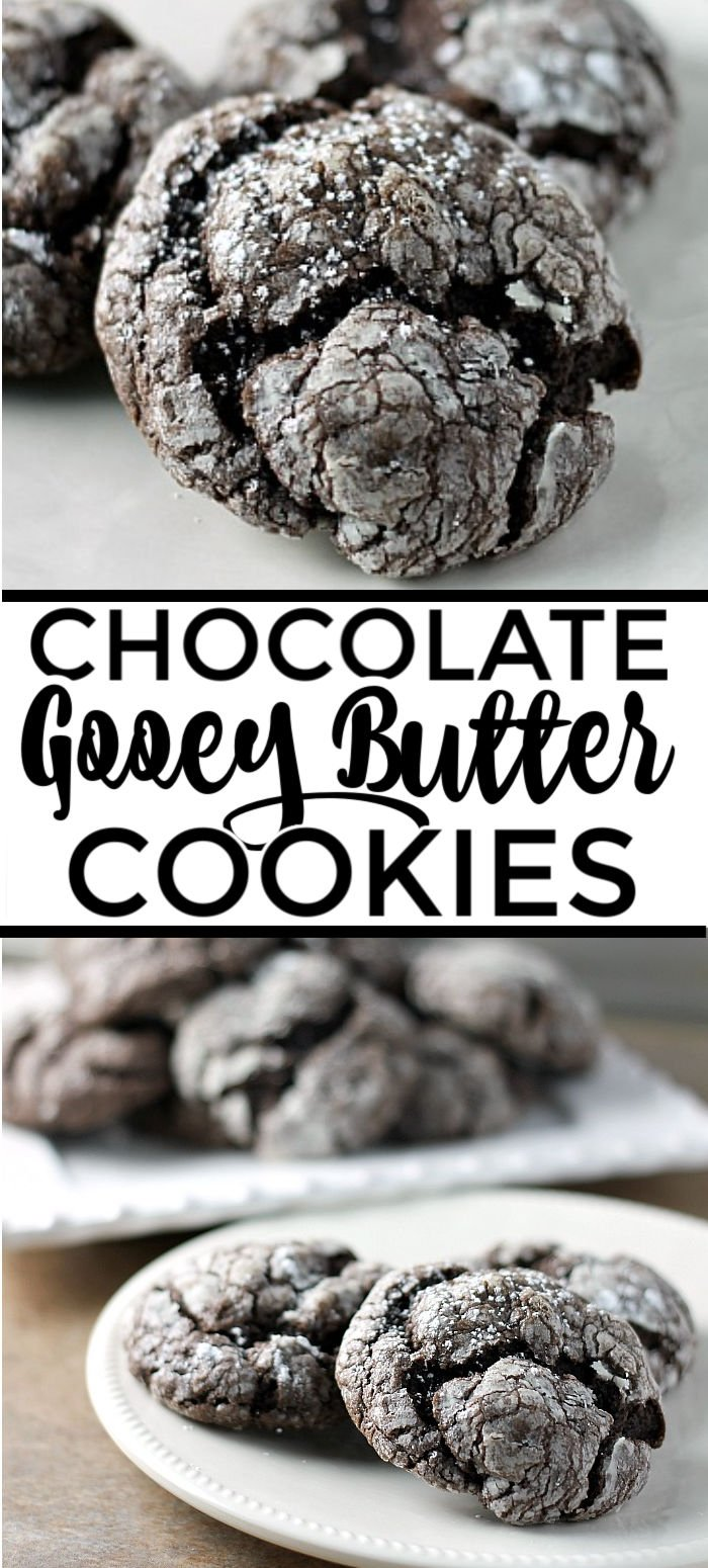 Chocolate Gooey Butter Cookies are light and pillowy and melt in your mouth! At only six ingredients, they just might be your new favorite cookie! | www.persnicketyplates.com #dessert #cookies #cakemixcookies #chocolate #baking #easyrecipe #semihomemade #christmascookies