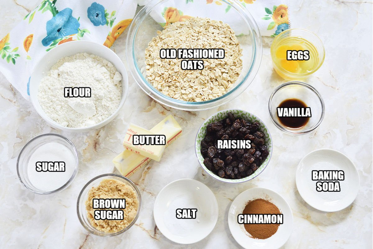 bowls of ingredients laid out to make oatmeal raisin cookies