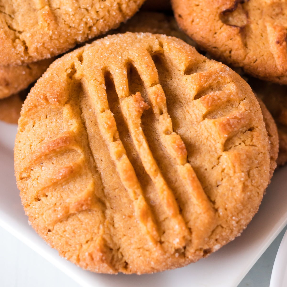 close up of peanut butter cookie with criss cross pattern