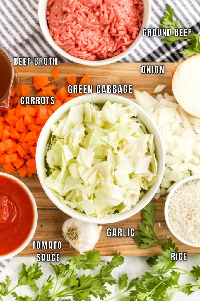 overhead shot of ingredients to make cabbage roll soup